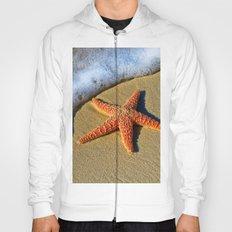 Starfish Wave Hoody