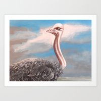ostrich Art Prints featuring OSTRICH by Peter Maring
