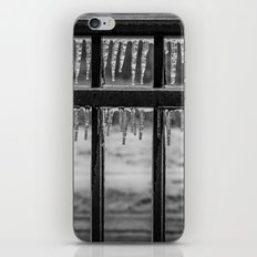 Frozen Fence iPhone & iPod Skin