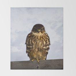 Merlin Falcon Throw Blanket