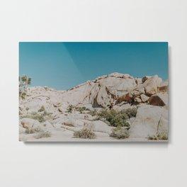 Joshua Tree National Park Metal Print