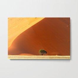 Red dunes of Sossusvlei Metal Print