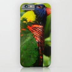 Lorikeet iPhone 6s Slim Case