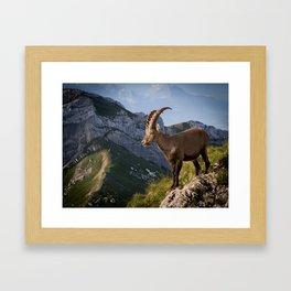 Capricorn in the Alps Framed Art Print