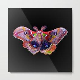 Glowy Moth Metal Print