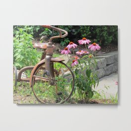 tricycle  and flowers Metal Print