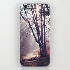 Wanderings iPhone & iPod Skin