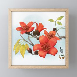 Tree Cotton Flower (Common Bombax) Framed Mini Art Print