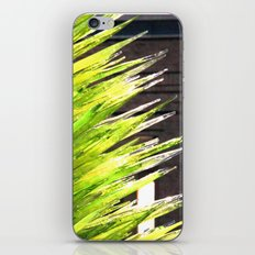 Organic iPhone & iPod Skin