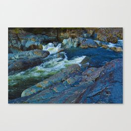 On route to Ucluelet on Vancouver Island, BC Canvas Print