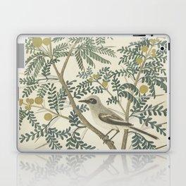 Robert Jacob Gordon - Acacia karroo Hayne or Vachellia karroo - 1777-1786 Laptop & iPad Skin