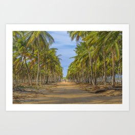 Topical Landscape Scene at Porto Galinhas Brazil Art Print