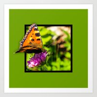 Butterly on the flower 3D pop out of frame effect Art Print