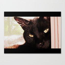 The Cat Movie Canvas Print