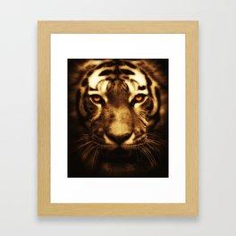 Midnight Tiger Framed Art Print
