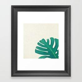 Monstera II Framed Art Print