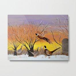 Pheasants in the sunrise Metal Print