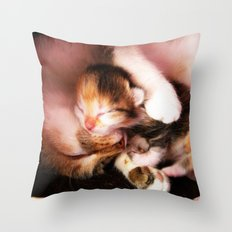 Cats hug Throw Pillow