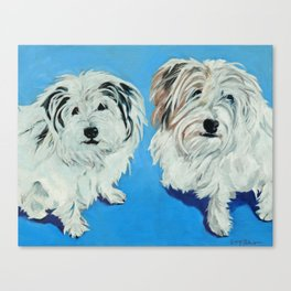 Two White Pups Dog Portrait Canvas Print