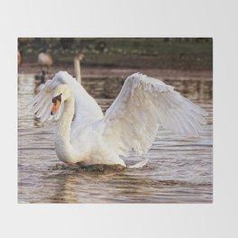 Elegant Swan Throw Blanket