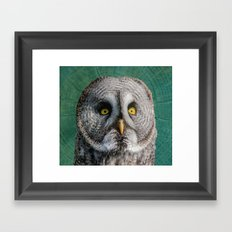 GREY OWL Framed Art Print