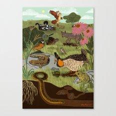 Ecosystem: Prairie Canvas Print