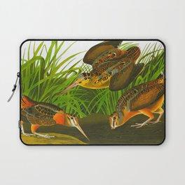 American Woodcock Audubon Birds Vintage Scientific Hand Drawn Illustration Laptop Sleeve