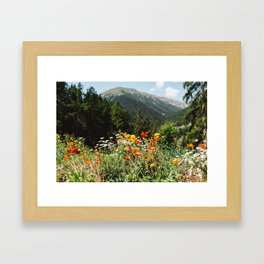 Mountain garden in Switzerland mountains Framed Art Print
