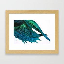Beta Fins Framed Art Print