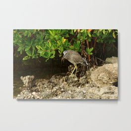 Love Crabs For Lunch Metal Print