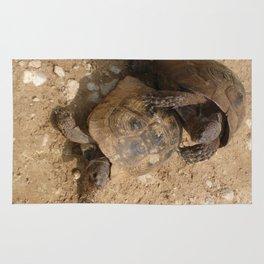 Slow Love - Tortoises Rug