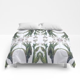 Forget Me Nots Study Dos Comforters
