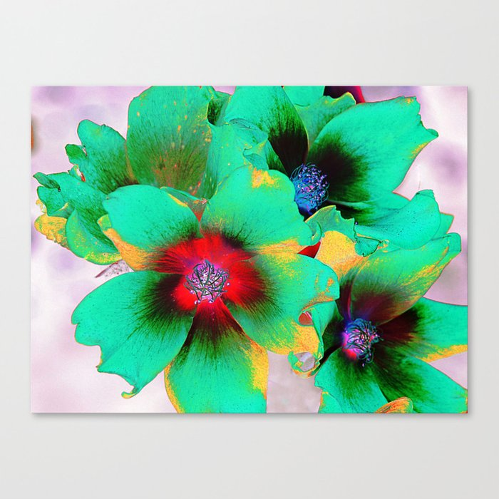 flowers in colors 98 Canvas Print