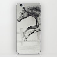 horse iPhone & iPod Skins featuring Horse by Anna Shell