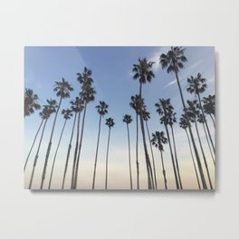 Santa Barbara Palms Metal Print