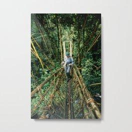 Vine Bridge of Death: Papua New Guinea Metal Print