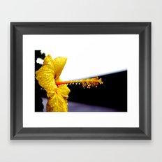 Wet Hibiscus Framed Art Print