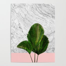 Palm Plant on Marble and Pastel Wall Poster