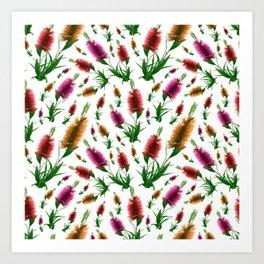 Australian Native Floral Bottlebrush Print Art Print