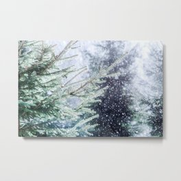 Snowfall, Green Spruce Trees. Winter Forest. Christmas Mood Metal Print