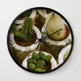 Potted Succulents (Color) Wall Clock