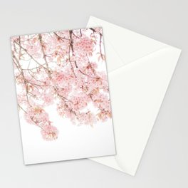 Pink Blooming Cherry Trees Stationery Cards