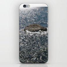 ----- iPhone & iPod Skin