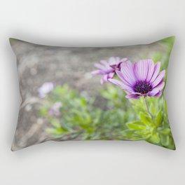 Osteospermum in Purple Rectangular Pillow