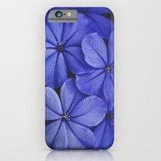 Purple/Blue Slim Case iPhone 6s