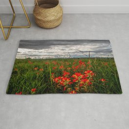 Brighten the Day - Indian Paintbrush Wildflowers in Eastern Oklahoma Rug