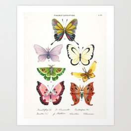 Butterfly Pokémon of the World Art Print