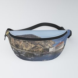 image-from-rawpixel-id-2221438-jpeg Fanny Pack