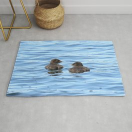 Baby loons Rug