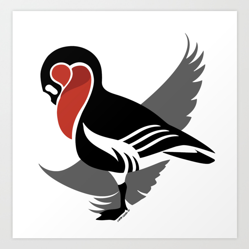 Red-breasted Goose (branta Ruficollis) Art Print by Kataszep (PRN9111971) photo